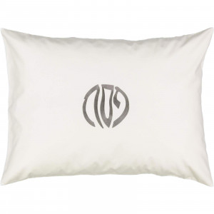 Pesach Rectangle Cotton Pillow Cases